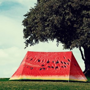 Luxury tent ดีไซน์แสนเก๋ ตรงตามไลฟ์สไตล์ของคุณ 22 - Picnic