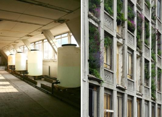25550315 083045 ปกปิดไซต์ก่อสร้างด้วยสวนแนวตั้ง..ไอเดียฉลาดๆของโครงการปรับปรุง The Rotterdam Stadskantoor