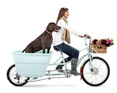 25550428 074120 Family bike...จักรยานสำหรับครอบครัว..
