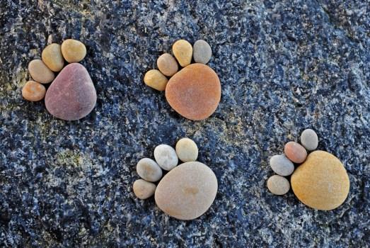 Paw Prints by Iain Blake 523x350 รอยเท้าจากก้อนหิน..โดย Iain Blake
