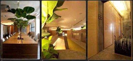 Green Network Office แรงบันดาลใจจากความสนุกสนานในวัยเด็ก 17 - Architecture