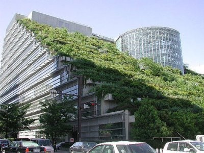 25550623 094111 ตึกเขียวในฟูกูโอกะ