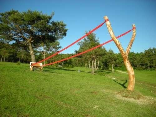 25550704 190840 งานศิลปะ ที่เล่นตลกกับแรงดึงดูดของโลก..เสกให้กิ่งไม้, ก้อนหินลอยได้