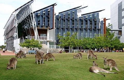 """Top 10 Green Campus"" 10 อันดับมหาวิทยาลัยสีเขียวในออสเตรเลีย 21 - Global Warming"