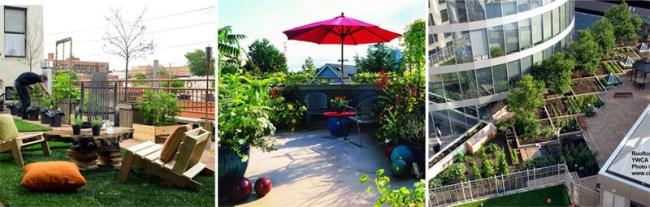 "Green on Rooftop Restaurant แนวคิดเรื่อง ""สวนครัวบนตึก ระฟ้า"" 18 - Rooftop Restaurant"