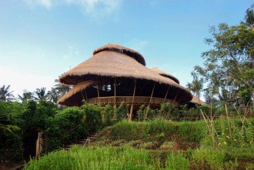 Green school at Bali,Indonesia  18 - greenery