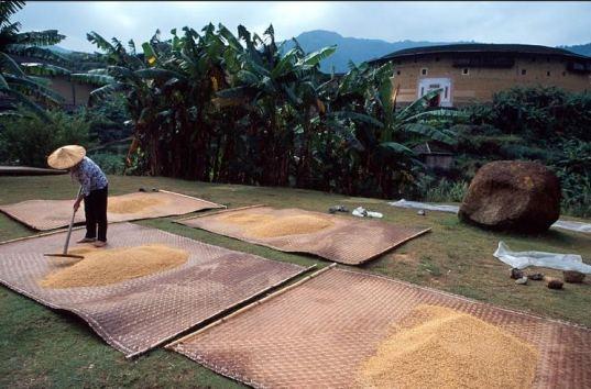 25550904 112757 บ้านดิน ชุมชนเก่าแก่มรดกโลกในฟูเจี้ยน