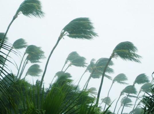 การศึกษาของMIT บอกว่าทุกอุณหภูมิที่เพิ่มขึ้น 1 องศาคือฝนที่ตกหนักขึ้น 10% ในแถบศูนย์สูตร 13 -