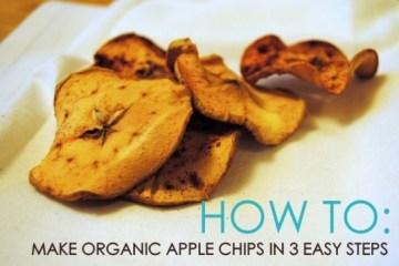 มาทำ Apple Chips ด้วย3 ขั้นตอนสุดง่ายกัน 14 - DIY