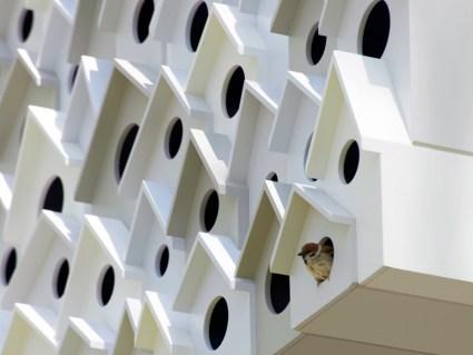 บ้านนก bird-apartment   7 - Apartment