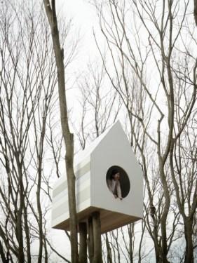 บ้านนก bird-apartment   10 - Apartment