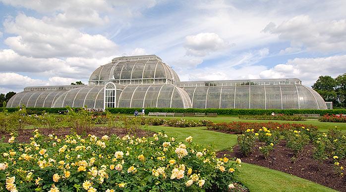 Palm House at Kew Garden ศูนย์รวมปาล์มจากทั่วโลก 22 - GREENERY