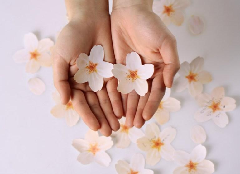 """กระดาษโพสต์-อิท ที่ร่วงโรย """"Cherry blossom memo stickers by appree"""" 13 - cherry blossom memo"""