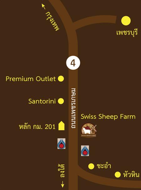 Swiss Sheep Farm..ฟาร์มแกะที่ชะอำ 31 - swiss sheep farm