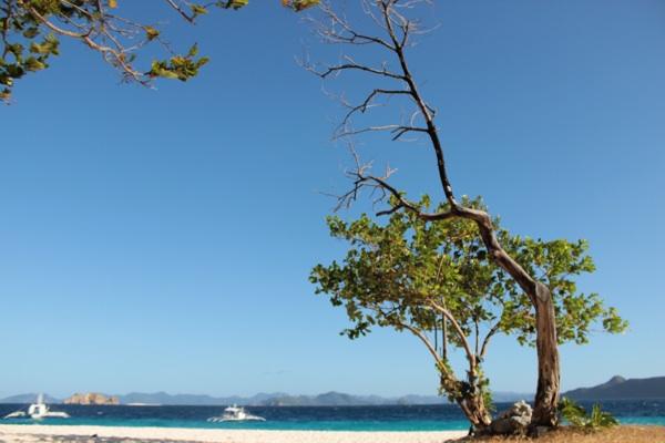 on the beach Coron Island, Palawan, Philippines (Chapter 2)