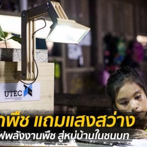 เพียงปลูกพืชก็สว่างได้ โคมไฟพลังงานพืช สู่หมู่บ้านในชนบท 21 - Eco