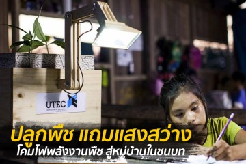 เพียงปลูกพืชก็สว่างได้ โคมไฟพลังงานพืช สู่หมู่บ้านในชนบท 6 - greenery