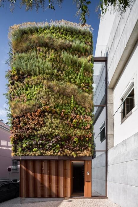 บ้านที่คลุมด้วยต้นไม้ 4,500 ต้น แบบสวนแนวตั้ง 13 -