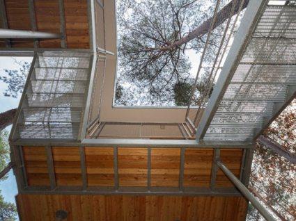 online 5 124398 slide 425x318 ประชุมท่ามกลางธรรมชาติ กับ The Treehouse in Belgium