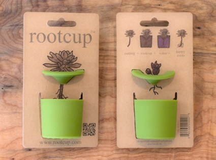 rootcup1