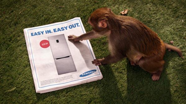 Sponsored Video: โจรจ๋อกับตู้เย็นใหม่จาก Sumsung... 13 - Easy In - Easy Out