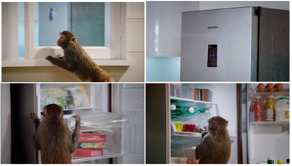 2 19 2013 10 58 45 AM Sponsored Video: โจรจ๋อกับตู้เย็นใหม่จาก Sumsung...
