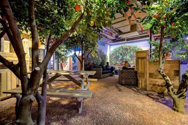 25560207 224641 สำนักงานใหม่ของ Google ในเมืองเทลอาวีฟ อิสราเอล... มันยอดเยี่ยมเกินบรรยาย