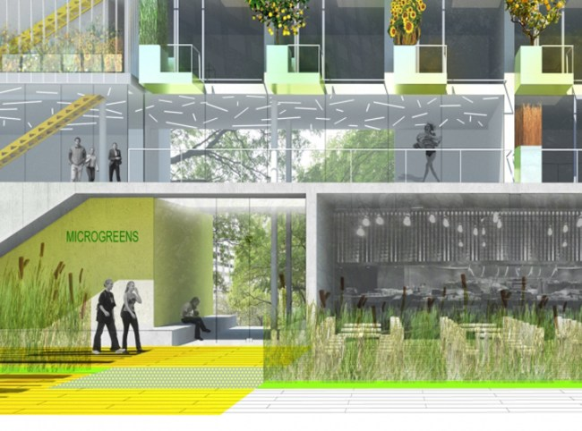 Bernheim-Architecture-MicroGreens1