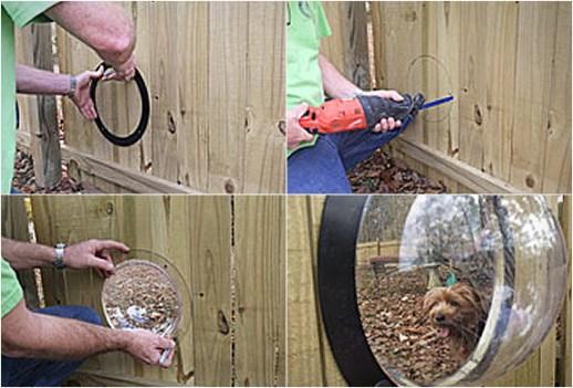 pet peek 2 Pet Peek Fence Window For Dog หน้าต่างเปิดโลกสำหรับเจ้าสุนัขแสนรัก