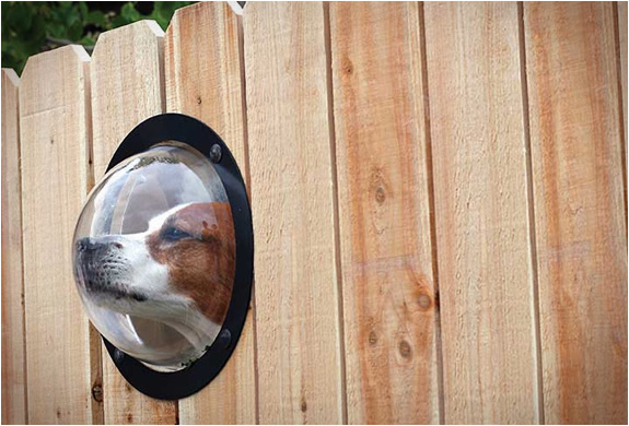 Pet Peek Fence Window For Dog หน้าต่างเปิดโลกสำหรับเจ้าสุนัขแสนรัก 13 - หมา