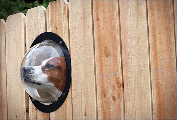 Pet Peek Fence Window For Dog หน้าต่างเปิดโลกสำหรับเจ้าสุนัขแสนรัก 32 - หมา