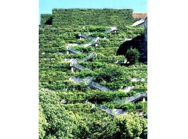 25560305 131714 Living wall..สวนแนวตั้ง ที่ไม่ได้เป็นแค่ชิ้นงานศิลปะขนาดใหญ่ แต่ยังเป็นผนังที่มีชีวิตและลมหายใจ ให้ความสุขกับผู้พบเห็น