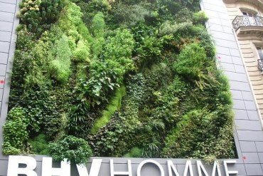 Living wall..สวนแนวตั้ง ที่ไม่ได้เป็นแค่ชิ้นงานศิลปะขนาดใหญ่ แต่ยังเป็นผนังที่มีชีวิตและลมหายใจ ให้ความสุขกับผู้พบเห็น 17 - Verticle Garden