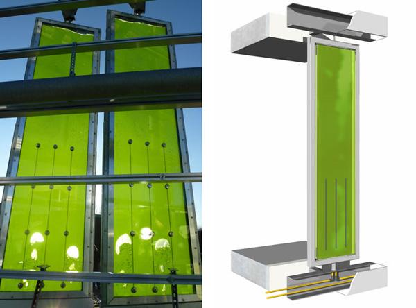 Algae-Powered-House-Biofacade-Splitterwerk-ARUP-Colt-International-SCC-Green-Power