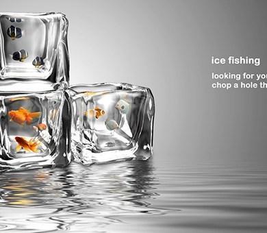 อ่างปลาในก้อนน้ำแข็ง 16 -
