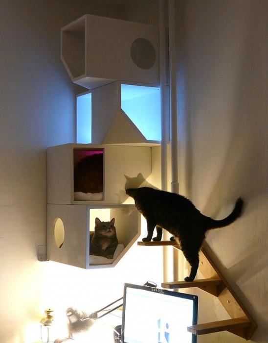 25560422 161502 Catissa – บ้านสไตล์โมเดิร์น 4 ชั้น สำหรับแมวเหมียว