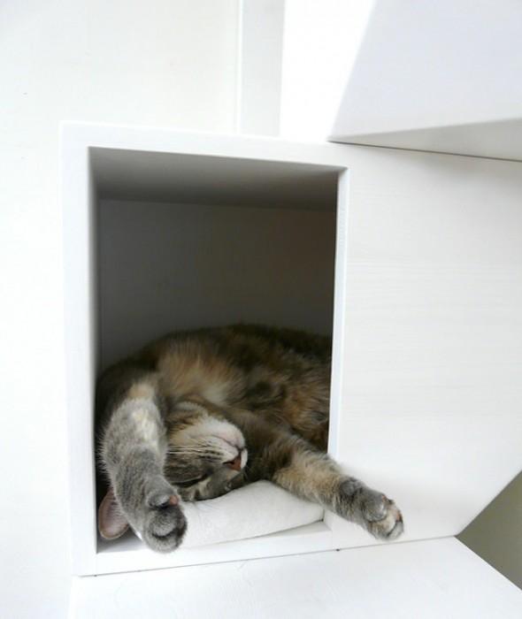 25560422 161508 Catissa – บ้านสไตล์โมเดิร์น 4 ชั้น สำหรับแมวเหมียว