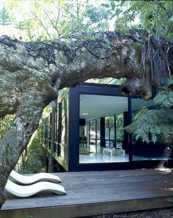 25560427 123422 Forest House ..บ้านแนวคิดกลับคืนสู่ธรรมชาติ ที่ห่างจากเมืองเพียงครึ่ง ช.ม.