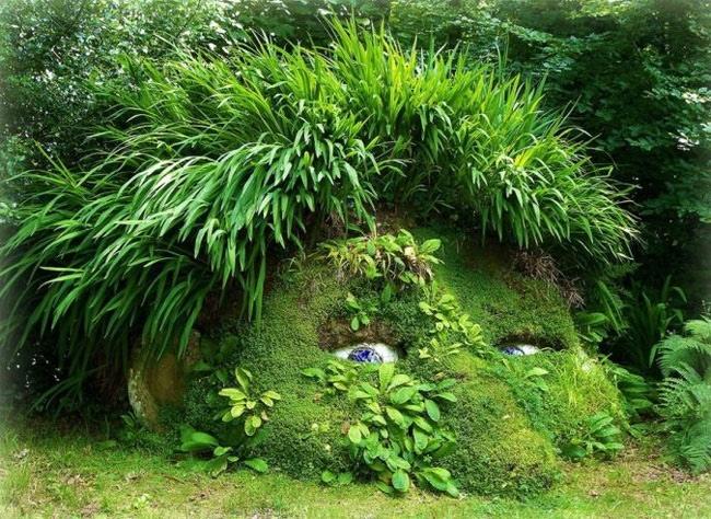 25560430 140053 The Lost Gardens of Heligan...สวนอายุ 400ปี ที่หายไปจากโลกนี้เกือบ 100ปี