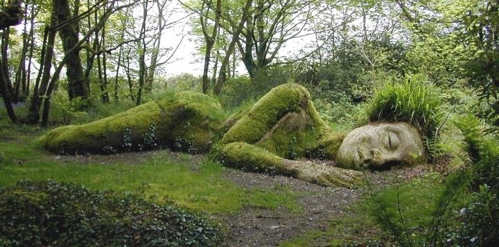 25560430 140154 The Lost Gardens of Heligan...สวนอายุ 400ปี ที่หายไปจากโลกนี้เกือบ 100ปี