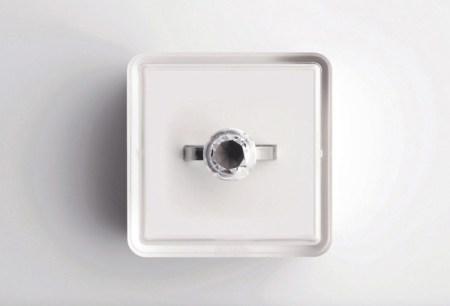 image7 450x306 ขอแต่งงานด้วย Invisible love ring