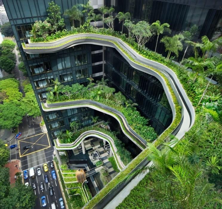 25560523 182138 สวนลอยฟ้า และรูปฟอร์มสวยงาม ที่ PARKROYAL Hotel สิงคโปร์