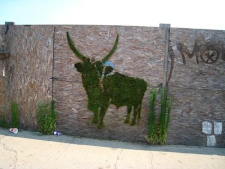 image17 450x337 Moss graffiti ศิลปะตกแต่งกำแพงแบบใกล้ชิดธรรมชาติ