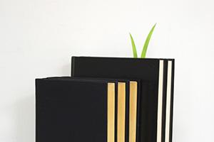 report01 Green marker ต้นหญ้ารักการอ่าน