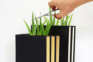 report03 Green marker ต้นหญ้ารักการอ่าน