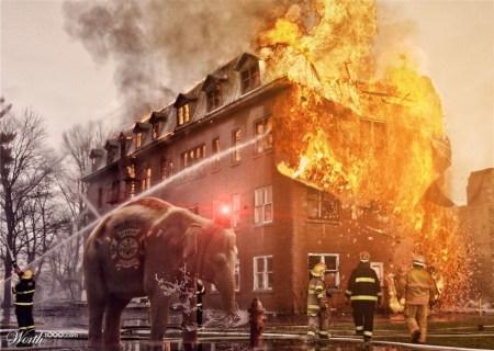 13967742 4895 1024x2000 450x320 Firephant ถังดับเพลิง งวงช้าง