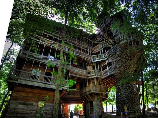 25560614 225503 บ้านต้นไม้จากไม้เก่า ใช้เวลาสร้างกว่า 11 ปี แบบไม่ต้องมีพิมพ์เขียว โดยพระที่เป็น Landscape Architect