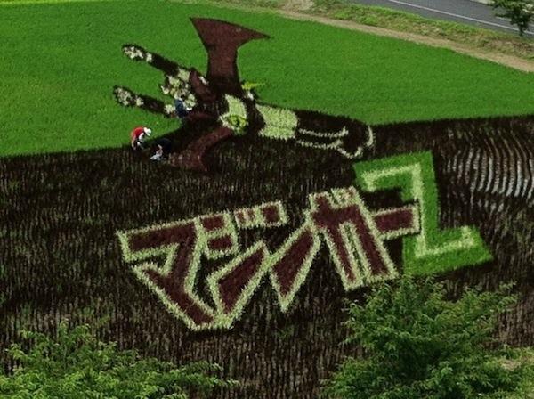 25560629 144754 ศิลปะบนแปลงนาข้าว ของญี่ปุ่น...เกินคำบรรยาย..