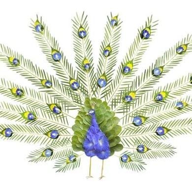 ชมภาพศิลปะบนInstagram..ภาพนกหลากหลายจากกลีบดอกไม้และใบไม้ 40 - Instagram
