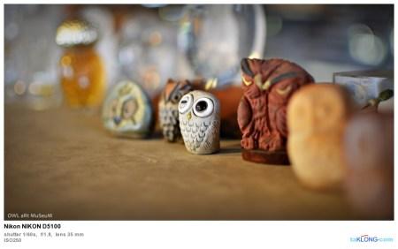 180473DSC 0210 450x282 พิพิธภัณฑ์ศิลปะนกฮูก Owl Art Museum